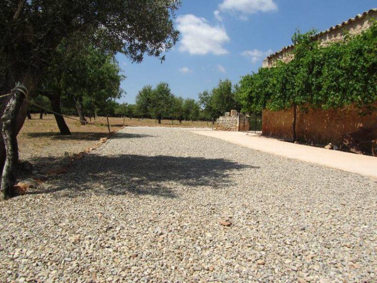 terraza-binissati (2)