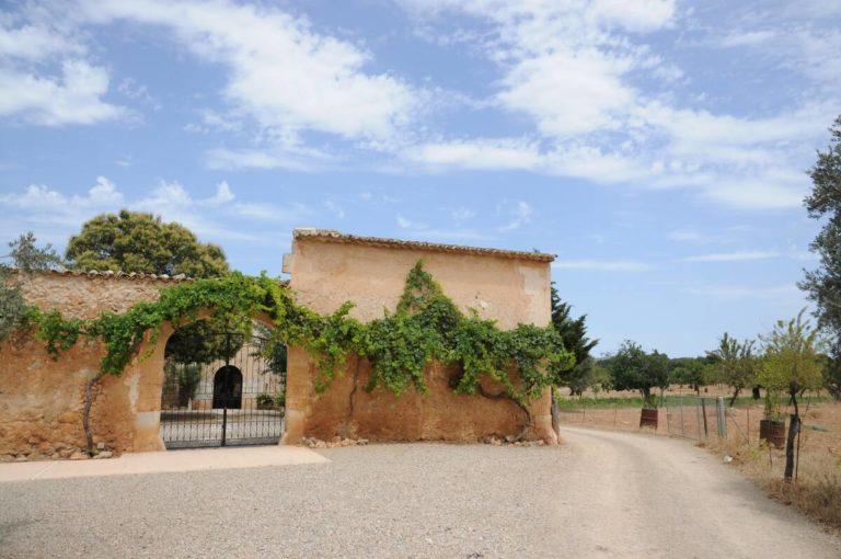terraza-binissati (3)